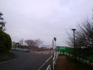 dc040413.jpg